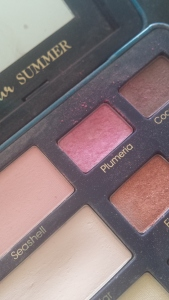 The pretty pink- Plumeria comes in the Bonjour Summer palette. If you can't find this palette- the sugar pop eye palette has a color- bubble gum in it which is very similar.